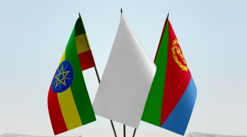 Eritrea to send delegation to Ethiopian capital after Ethiopia accepted peace agreement